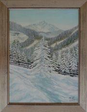 Winterlandschaft, Schneelandschaft, Villingen,