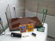 Verkaufe kleine Aquarium