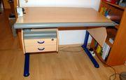 Schreibtisch von MOLL