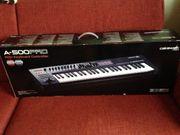 Roland Keyboard A500PRO
