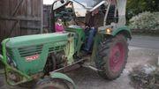 Traktor Deutz 4506