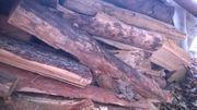 Brennholz Fi Ki