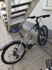 Fahrrad Scott 26 Zoll für