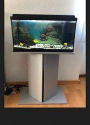 Aquarium mit Schrank und Zubehör