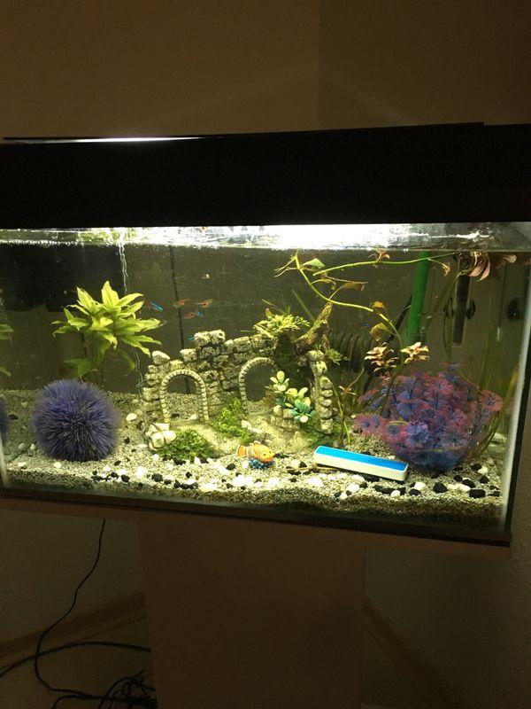 aquarium tisch kleinanzeigen kaufen verkaufen bei. Black Bedroom Furniture Sets. Home Design Ideas