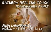 Training Natural Horsemanship -