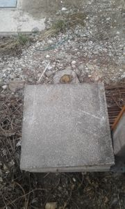 Steinplatten Pflanzen Garten Günstige Angebote Quokade