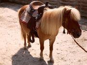 Ponyreiten, Ferienzeit ! Eltern,