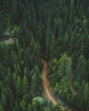 Suche Waldgrundstück zum Kauf