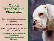 Mobile Hundeschule Mühlacker A Noll