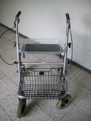 Gehwagen Basic