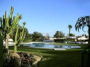 gran canaria bungalow garten pool