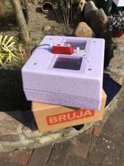 Inkubator (Brutmaschine) 400