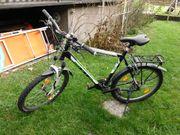 BULLS Fahrrad 29