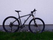 MTB Focus Black Forest 29
