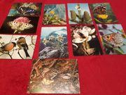 DJH-Spendenkarten Pflanzen und Tiere aus