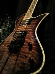 E Gitarre Fernandes