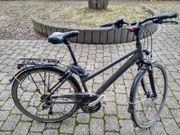 Fahrrad grau