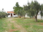 Griechenland - Ferienhaus im Olivengarten gelegen