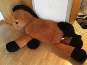 BIG Pony