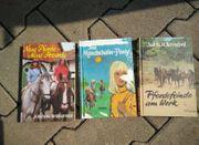 Kinderbücher Pferdebücher