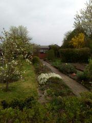 kassel garten kleingartenverein