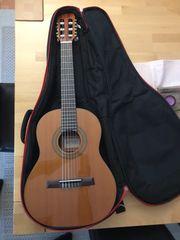 Konzertgitarre in 1 2 Größe