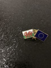 Exklusiver Pin EU Delegation Cardiff