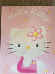Hallo Kitty Panel