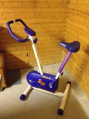 Ergometer, Fitness Heimtrainer