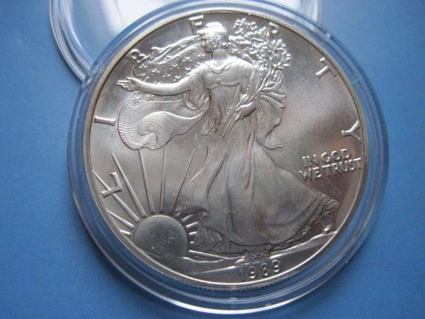 Usa 1 Dollar 1989 American Silver Eagle 1oz Silber In Bremen