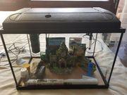 Verkaufe Aquarium komplettset