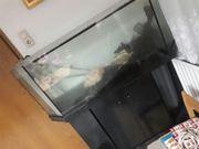 Aquarium mit Pumpe