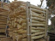 Zaunpfosten - Weidezaunpfahl Zaun Pfosten Pfahl
