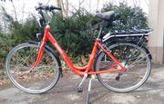 Winterpreis Pedelec Citybike