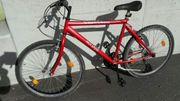 Herrenfahrrad ( Mountainbike )