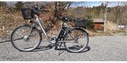 Prophete E-Bike Größe 28