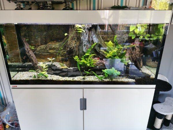Turbo ❤ eheim incpiria Kleinanzeigen kaufen & verkaufen bei ZI48