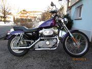 Harley Sportster 883 XL53C Bj