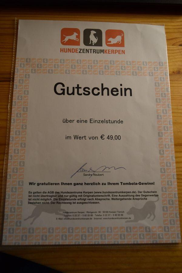 Gutschein über 49 Euro Für Eine Einzelstd Hundezentrum Kerpen In