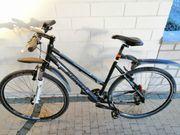 STAIGER DAYTONA Superlight-Sportline Cross- Trekkingbike