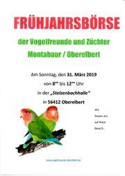 Offene Vogelbörse Oberelbert am 31