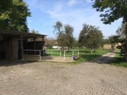 Pferdebox frei (Privatstall)