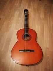 Gitarre Akustikgitarre Yamaha g-65 A