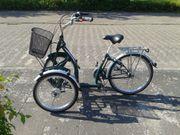 Pfau-tec Bene T-bike Erwachsenen-Dreirad Therapierad