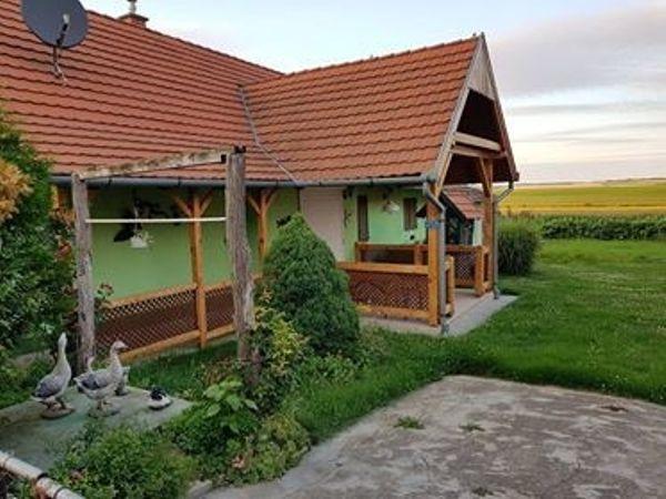 Haus in Ungarn zu vermieten
