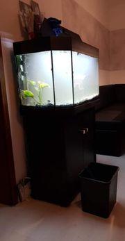 Aquarium 160 Liter