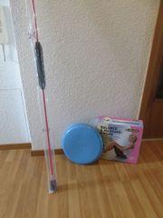 Swing-Stick mit Balancekissen zu verkaufen