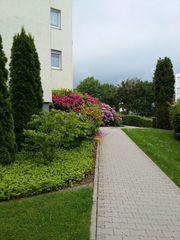 Helle 2-Zimmer-Wohnung in Straubenhardt-Schwann