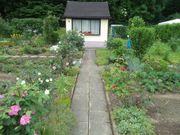 Garten in Pirna